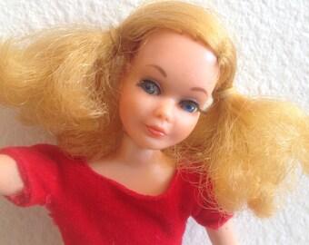 Living Skipper Doll Silk N Fancy Dress