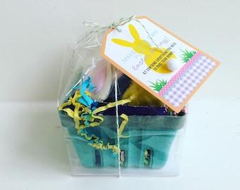Easter Basket Filler, Kids Easter Gift, Easter Craft for Kids, Easter Favor, Easter Bunny Playdoh Kit, DIY Easter Bunny, Playdoh Bunny