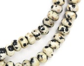 MOVING SALE Dalmatian Jasper Beads - 6mm Rondelle - Half Strand