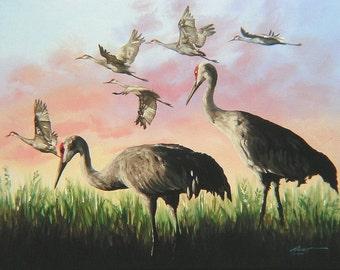 Sandhill Cranes 11 x 17 print (image 10.5 x 14.5) personally signed by artist RUSTY RUST / C-45-P