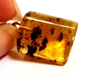 """Baltic Amber Pendant with Fossil Insect Natural 1.22"""" 2.3 gram 925 silver"""