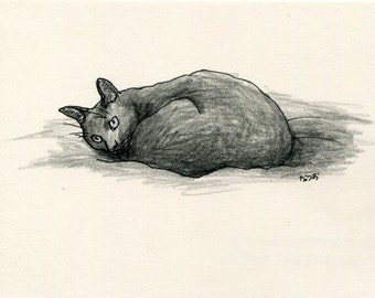 Cat original drawing - P024November2015