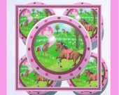 1 (one)  PRETTY HORSE Pink Brown  kids baby girls mtm bedding set Dresser Drawer Knobs