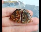 Ammonite Fossil Gemstone Earring Bead,23x18x5mm,7.0g