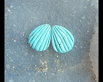 Carved Turquoise Gemstone  Cabochon Pair,18x14x4mm,3.5g