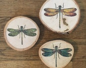 Dragonfly Wood Wall Décor