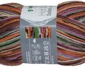 Salsa German self striping sock yarn Grundl,75/25 superwash wool/polyamid col 04