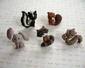 Rabbit, Squirrel, Skunk, Racoon, Wild Animal Thumbtack, Wild Animal Push Pin, Forest Animal Notice Board Pins