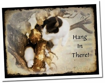Hang In There, Cat Card, Note, Greeting, Encouragement