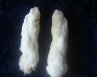 White Rabbit Feet - Rear Paws - Naturally Dried
