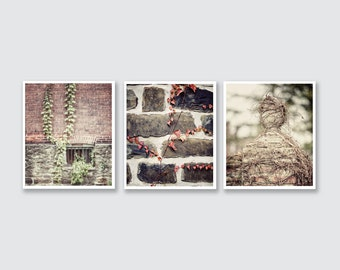 Rustic Print or Canvas Wrap Set of 3, Rustic Wall Art Set of 3, Brick Stone Ivy, Cottage Print Set, Neutral Home Decor, Vintage Inspired.