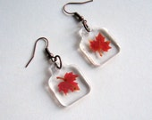 Real Autumn Maple Leaf Woodland Earrings - botanic jewelry, pressed leaves, leaf earrings, small earrings, maple leaf, Canada, Autumn, ooak