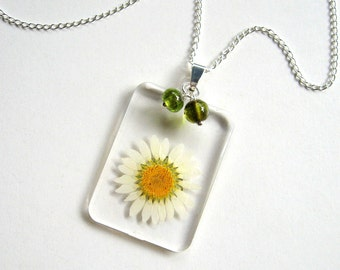White Daisy - Real Flower Garden Necklace -  botanic jewelry, pressed flower, white, green beads, natural, Nature inspired, modern, ooak