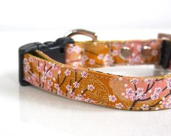 Mustard Cherry Blossom SAKURA Dog Collar - mustard, pale pink