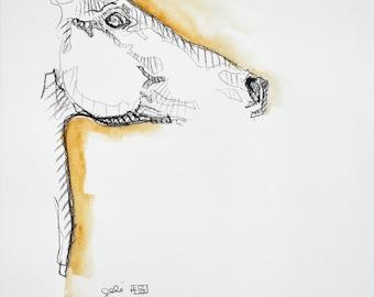 Art drawing of Horse, Contemporary Art, Study of a horse head, Modern Art