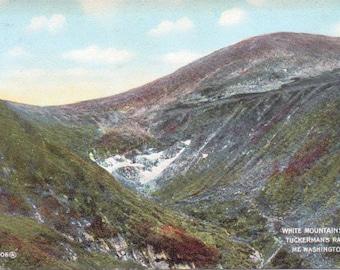 White Mountains, Tuckerman's Ravine, Mt. Washington, New Hampshire - Vintage Postcard - Postcard - Unused (A10)