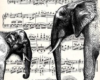 ELEPHANT in LOVE MUSIC Tuba Mozart Elefant Art Opera Melody Score Illustratio Baby Elephant the magic flute mr 70 1