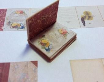 PDF Latin Botanical 'Historia'  Miniature Book for Dollhouse 1/12 Scale DIGITAL DOWNLOAD