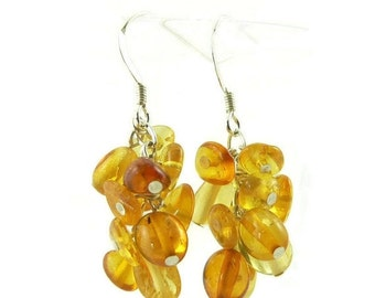 SALE Natural Baltic Amber and Sterling Silver Cluster Dangle Earrings - Lightweight Earrings  -  Artisan Jewelry