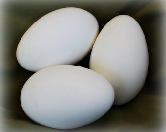 3 Hand Blown Goose Eggs