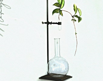 vintage chemistry lab stand with test tube and beaker