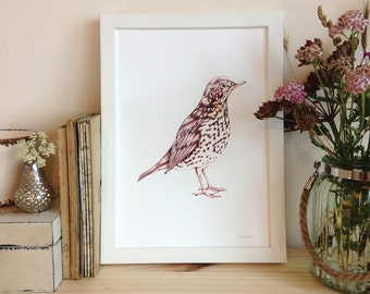 Bird Digital Print, Art Print, Wall Art, A4 onto archive grade paper