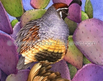 PRINT of Gambel's Quail Prickly Pear Watercolor Painting, Bird Painting, Bird Art Print, Wall Art Home Decor, Wildlife Nature, Desert Purple