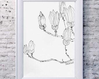 A Magnolia Branch III