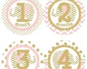 ON SALE Baby Monthly Milestone Growth Stickers Gold and Soft Light Pink Elephant Nursery Theme MS215 Baby Shower Gift Baby Photo Prop