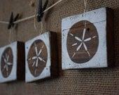 Set of 3 Ornaments Rustic Nautical Sand Dollars