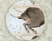 Taurus Constellation melamine plate