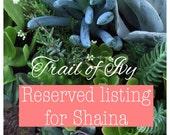 Reserved listig for Shaina