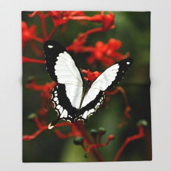 Fleece, Throw Blanket, Mocker Swallowtail Butterfly, Photo, Home Decor, Photography, Housewarming Gift, Living Room Decor, Country Decor