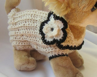 2XSmall Micro-teacup Dog sweater Hand crocheted in ivory cream with black trim and flower