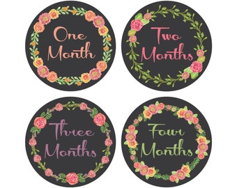 Monthly Growth Stickers, Monthly Baby Stickers, Baby Monthly Stickers, Bodysuit Baby Month Stickers, Floral