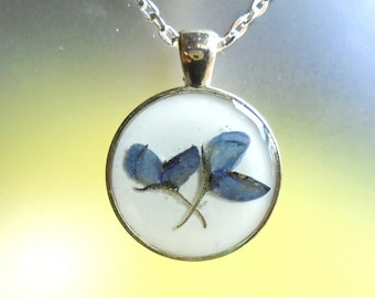 Texas Bluebonnet Real Pressed Flower Silver Plated Round Necklace