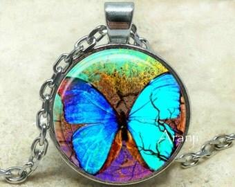 Iridescent blue butterfly art pendant, butterfly necklace, butterfly pendant, butterfly jewelry, iridescent blue butterfly, Pendant #AN220P