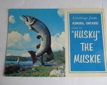 Husky The Muskie Unused Postcards Fish Postcards Kenora Ontario Canada Postcard Fighting Fish Muskellunge Muskie Fish