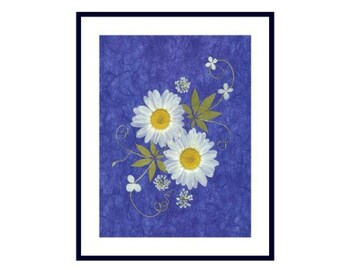 Pressed Flower Print - Daisies on Blue - 8 x 10 #018
