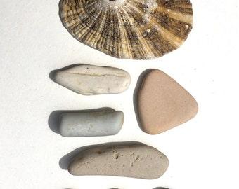 Found Objects, Natural, Beachcomb, Terrarium Aquarium Kit, DIY, Beach Stones, Mixed Media, Porcelain, pottery