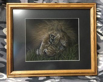 Original Lion pastel done on black velour paper.