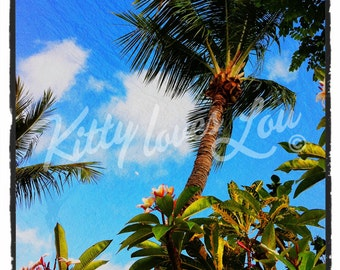 INSTANT DOWNLOAD Digital Palm trees photo retro vintage Printable tropical Maui Hawaii palms nature turquoise beachy grunge