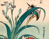 Japanese art, Kingfisher, Iris, Wild Pinks Hokusai FINE ART PRINT, Japanese bird-and-flower woodblock prints, paintings reproductions