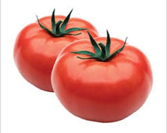 BEEFSTEAK TOMATO SEEDS 8 Fresh seeds ready to plant in your garden tomatoes