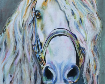 CLEO - 12 x 18 inch horse fine art print of an Andalusian mare from original pastel painting equestrian home decor wall art
