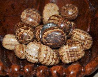 Aragonite Tumbles