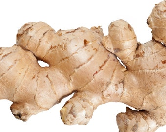 Ginger Root Growth Lotion