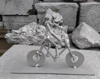 Bike rider.