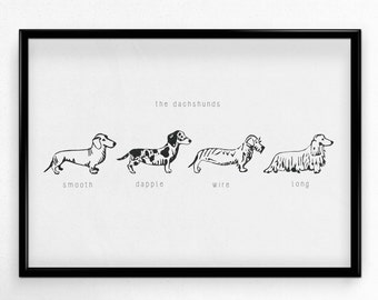 The Dachshunds Print | A4