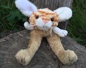 Bunny Longlegs